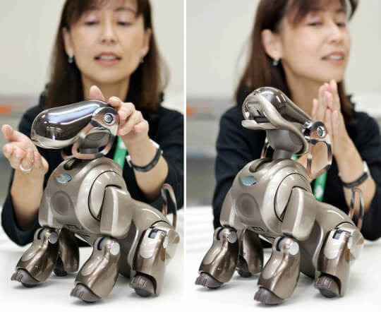 Sony will launch a new version with artificial intelligence of its dog-robot AIBO